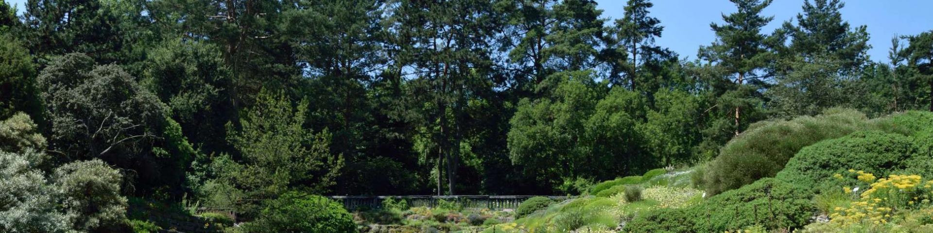 Arboretumsgärtner